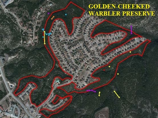 Information regarding the Golden Cheeked Warbler Preserve